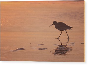 Wood Print featuring the photograph Early Morning Walk by Sharon Jones
