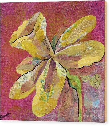 Early Spring II Daffodil Series Wood Print by Shadia Derbyshire