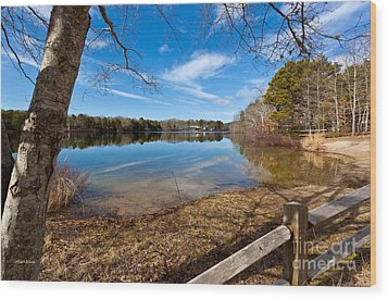 Early Spring On Long Pond Wood Print by Michelle Wiarda