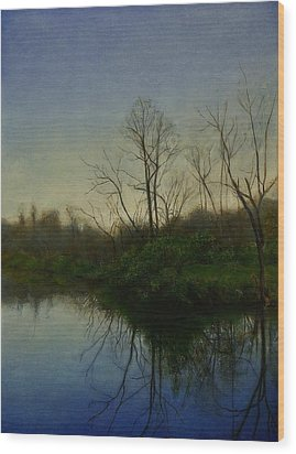 Early Spring Wood Print by Wayne Daniels