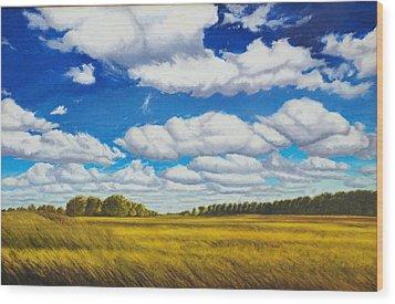 Early Summer Clouds Wood Print by Leonard Heid