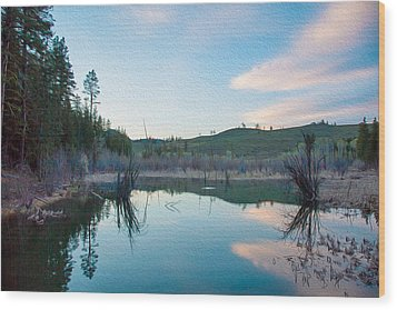 Early Sunset On A Beaver Pond  Wood Print by Omaste Witkowski