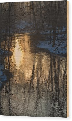 Early Winter Morning Wood Print by Karol Livote