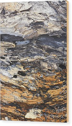 Earth And Sky Wood Print by Marcia Lee Jones