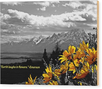 Earth Laughs In Flowers Wood Print by Dan Sproul