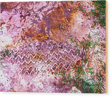 Earth Map 1 Wood Print by Chuck Taylor