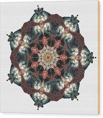 Earth Nest Wood Print by Lisa Lipsett