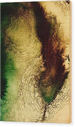 Earth Tones Abstract Art Depths Of The Grand Canyon  Wood Print by Serg Wiaderny