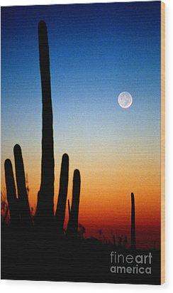 Earthshine Wood Print by Douglas Taylor