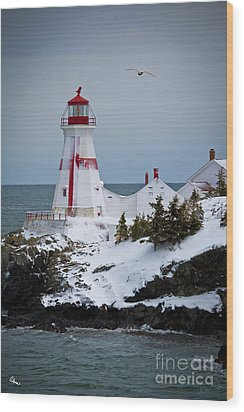 East Quoddy Head Lighthouse Wood Print by Alana Ranney