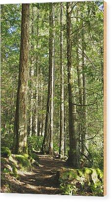East Sooke Park Trail Wood Print by Marilyn Wilson