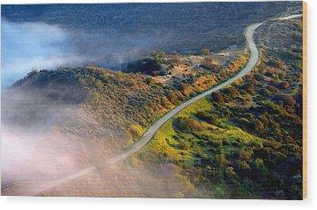 East Topanga Fire Road Wood Print by Catherine Natalia  Roche