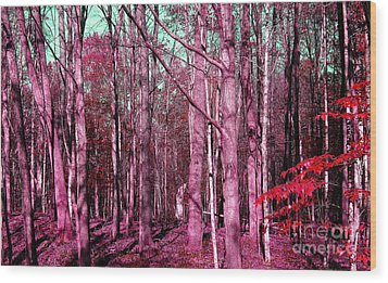 East Trail  Wood Print by Tina M Wenger