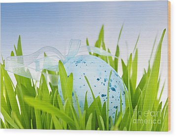 Easter Egg In Grass Wood Print by Elena Elisseeva