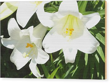Easter Lilies At Longue Vue Wood Print by Katie Spicuzza