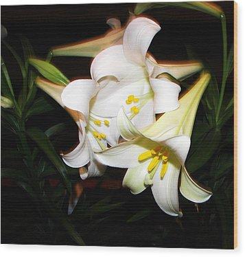 Easter Lilies Wood Print by Pamela Hyde Wilson