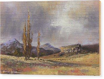 Eastern Free State Scene Wood Print