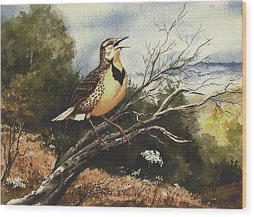 Eastern Meadowlark Wood Print by Sam Sidders