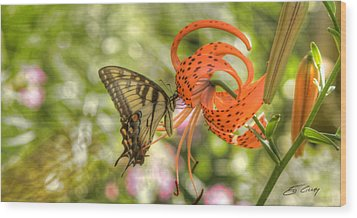 Eastern Tiger Swallowtail - Papilio Glaucus - Butterfly On Tiger Lily Wood Print