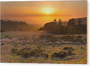 Easy Living - Russian Ridge California Wood Print by Matt Tilghman