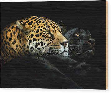 Ebony And Ivory Wood Print by Pedro Jarque