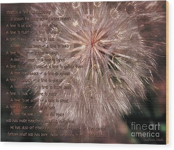 Ecclesiastes Seasons Wood Print by Constance Woods