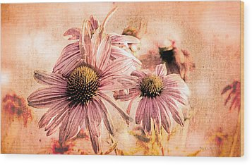 Echinacea Impressions  Wood Print by Bob Orsillo