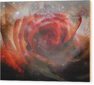 Echoes Of The Rose Wood Print by Judy Paleologos