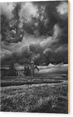 Echos Wood Print by Phil Koch