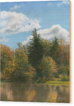 Edge Of The Pond Wood Print by Wayne Daniels