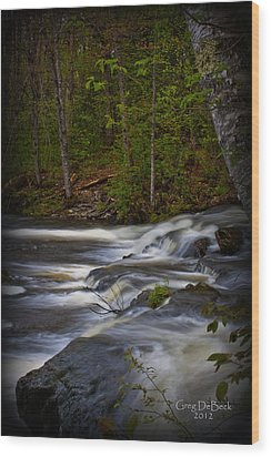Edge Of The Stream Wood Print by Greg DeBeck