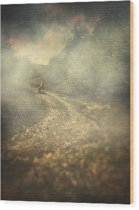 Edge Of The World Wood Print by Taylan Apukovska
