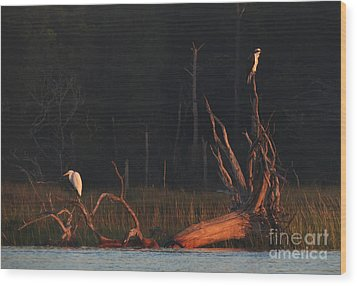 Wood Print featuring the photograph Egret And Osprey Sunrise by Deborah Smith
