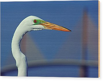 Wood Print featuring the photograph Egret And Skyway II by Daniel Woodrum