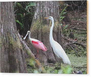 Egret And Spoonbill Wood Print by Theresa Willingham