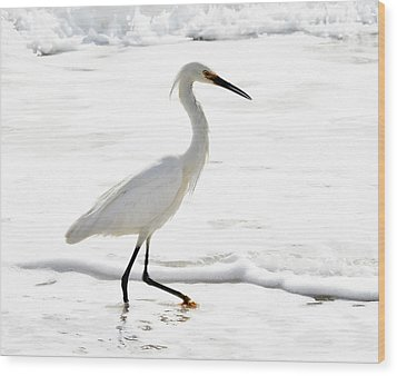 Egret Wood Print by Camille Lopez