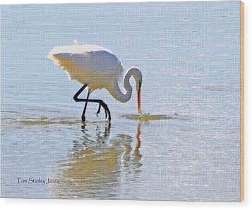 Egret Catches A Fish Wood Print by Tom Janca