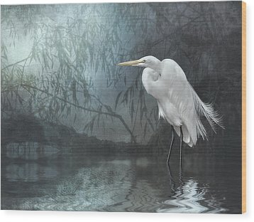 Egret In Moonlight Wood Print