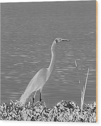 Wood Print featuring the photograph Egret In White Satin by Frank Bright