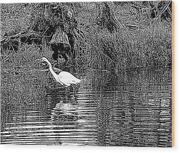 Wood Print featuring the photograph Egret On The Move by Suzy Piatt