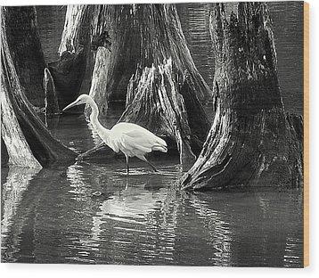 Egret Solitude Wood Print