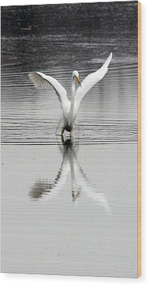 Egret Wood Print by Valerie Wolf
