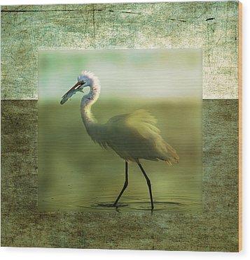 Egret With Fish Wood Print
