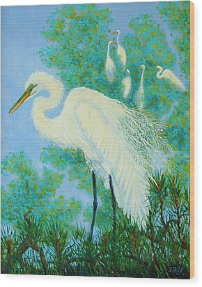 Egrets In Rookery - 20x16 Wood Print