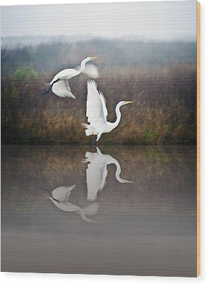 Egrets In The Fog Wood Print by John Collins