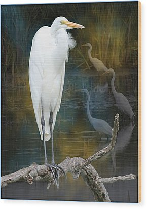 Egrets Wood Print by John Kunze