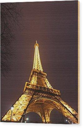 Eiffel Tower - Paris France - 011313 Wood Print by DC Photographer