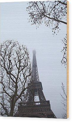 Eiffel Tower - Paris France - 011318 Wood Print by DC Photographer