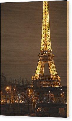Eiffel Tower - Paris France - 011320 Wood Print by DC Photographer