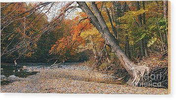 Eighteen Mile Creek Wood Print